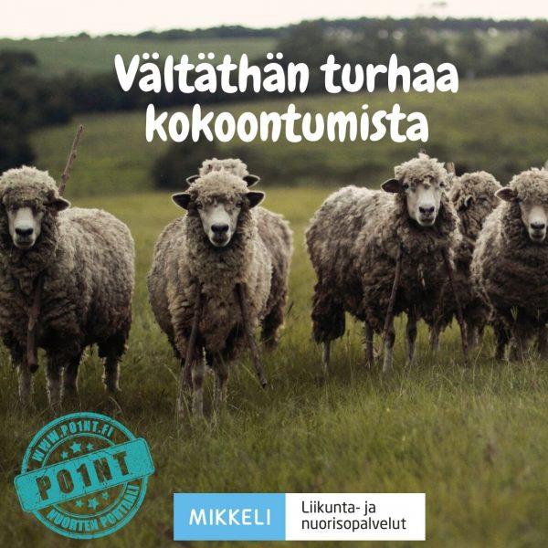 (Kuva jossa lampaatovat rivissä) Vältäthän turhaa kokoontumista.