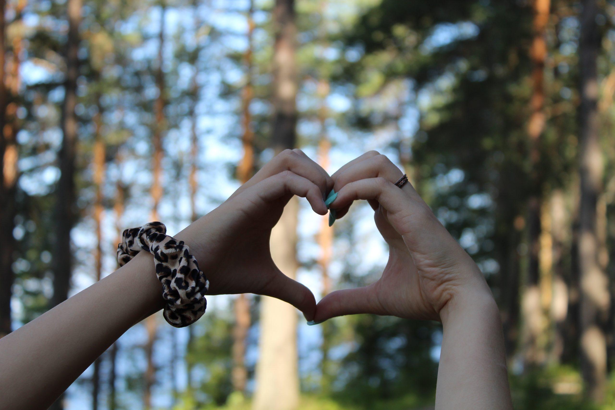 Käsillä havainnollistettu sydän
