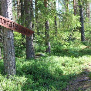 Metsää, jossa polku ja luontopolku -kyltti